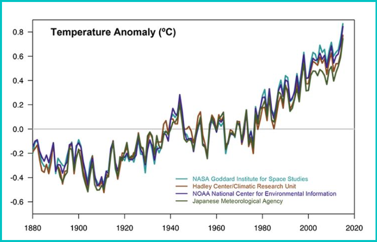 Temperature data from four international science institutions. All show rapid warming in the past few decades and that the last decade has been the warmest on record. Data sources: NASA's Goddard Institute for Space Studies, NOAA National Climatic Data Center, Met Office Hadley Centre/Climatic Research Unit and the Japanese Meteorological Agency.
