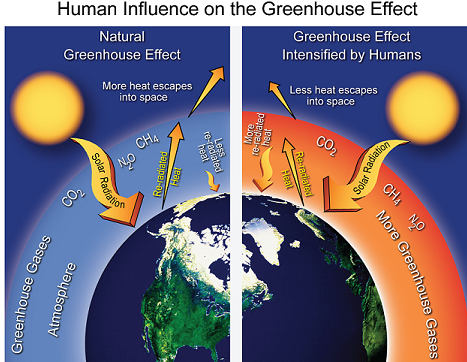 A stylized representation of the natural greenhouse effect. Most of the sun's radiation reaches the Earth's surface. Naturally occurring heat-trapping gases, including water vapor, carbon dioxide, methane, and nitrous oxide, do not absorb the short-wave energy from the sun but do absorb the long-wave energy re-radiated from the Earth, keeping the planet much warmer than it would be otherwise. Right: In this stylized representation of the human-intensified greenhouse effect, human activities, predominantly the burning of fossil fuels (coal, oil, and gas), are increasing levels of carbon dioxide and other heat-trapping gases, increasing the natural greenhouse effect and thus Earth's temperature. (Figure source: William Elder, National Park Service)