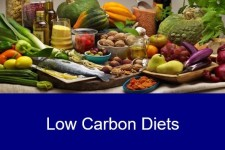 Healthy Lower Carbon Diets